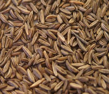 sheema-jeerakam « Kerala Recipes Caraway Seeds Indian Name